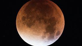 """Seltenes Himmelsspektakel: """"Blutmond"""" lockt Schaulustige in die Nacht"""