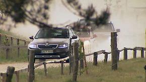 Wie gut ist der Allradantrieb?: Geländewagen messen sich bei Wolfssuche im Wald