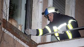 n-tv Ratgeber: Tierrettung: Wer haftet für die Kosten der Feuerwehr?