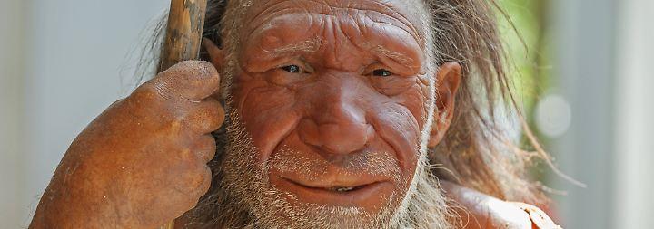 Homo sapiens und andere Menschen: Eine Stammesgeschichte