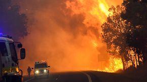"""""""Verheerende Naturkatastrophe"""": Riesiges Buschfeuer zerstört 140 Häuser in Westaustralien"""