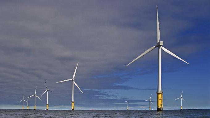 Vor der Küste von Wales: Die riesigen Offshore-Windkraftanlagen des Kraftwerkparks Gwynt-y-Mor.
