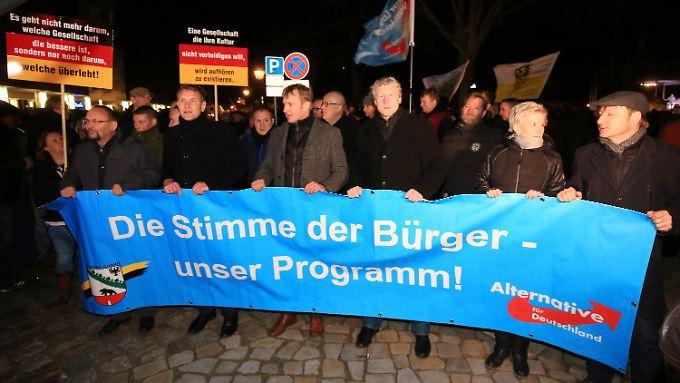 AfD-Prominenz vor dem Magdeburger Dom: Björn Höcke (2.v.l.) und AfD-Landesvorsitzender von Sachsen-Anhalt, Andre Poggenburg (M.).