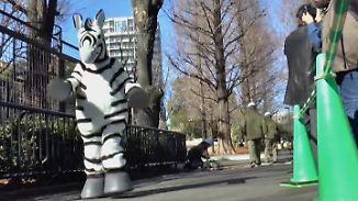 Tokioter Zoo probt Ernstfall: Verkleidete Mitarbeiterin spürt Angst eines ausgebrochenen Zebras