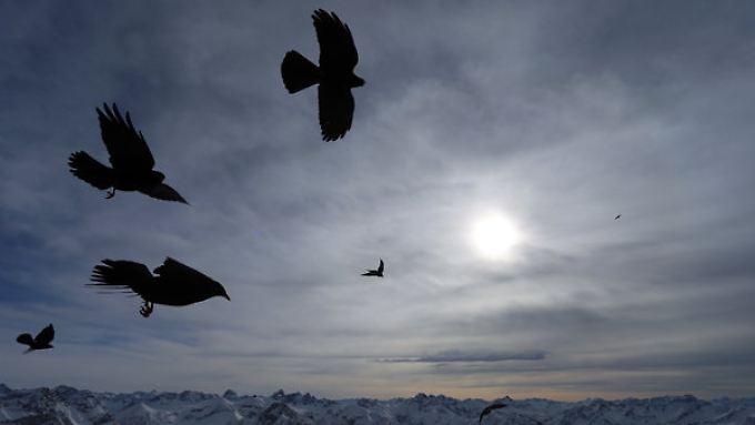 Schauer und Schnee in der Nacht: Am Aschermittwoch wird es wieder kälter