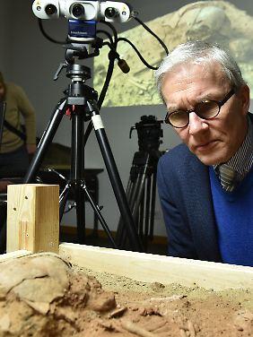 Träumte immer von so einem Fund: Prähistoriker Thomas Terberger.