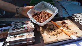 Wer's mag: Gesunde Proteine in einem Insektenriegel auf der Paleo Convention 2015 in Berlin.