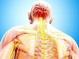 Bei Schädigung des Rückenmarks: Schrittmacher macht Bewegungen möglich