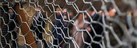 Faymann macht die Grenzen dicht: Mit Österreich verliert Merkel einen weiteren Verbündeten
