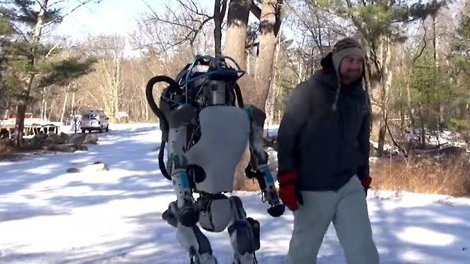 Sie wirken wie zwei Freunde: Blech-Kamerad Atlas und ein richtiger Mensch beim Geländetest.
