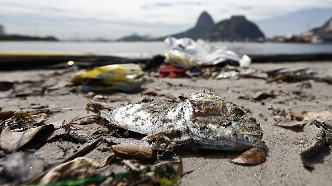 In der Guanabara-Bucht von Rio de Janeiro werden Unmengen an Müll angetrieben.