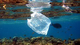 Plastikmüll belastet nicht nur die Meere.