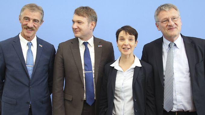 Parteichefin Petry mit den Wahlsiegern aus den Bundesländern.