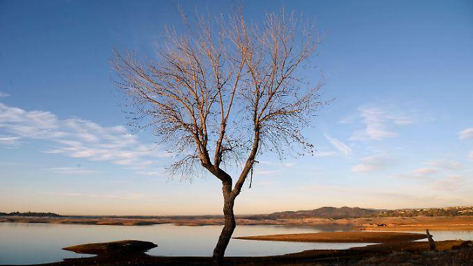 Auch der Folsom Lake in Kalifornien hat viel Wasser verloren und ist stark geschrumpft.