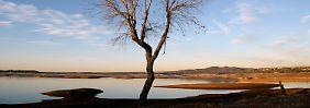 Leere Brunnen, tote Bäume: 22.3. Kalifornien geht das Wasser aus