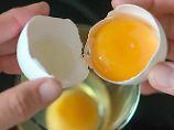 Als Cholesterinbombe geschmäht: Das Ei ist rehabilitiert
