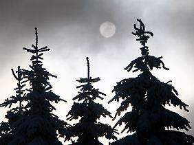 Bei der Herbst-Winter-Depression verspüren Betroffene gesteigerten Appetit und sie schlafen mehr.