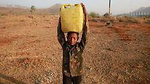 """""""Jahrhundertkatastrophe"""" in Asien: Indien kämpft mit hausgemachter Dürre"""