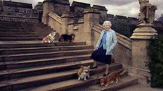 Royale Fotooffensive zum 90.: Queen Elizabeth II. feiert runden Geburtstag