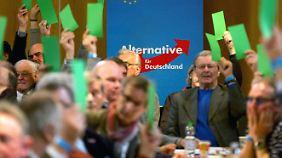 Debatte um Anti-Islamkurs: AfD präsentiert sich in Stuttgart als deutschnationale Partei