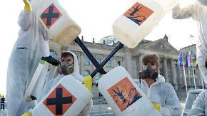 Umstrittener Unkrautvernichter: EU entscheidet über die Zukunft von Glyphosat