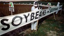 Proteste von Greenpeace auf einer Sojabohnenfarm in Iowa.