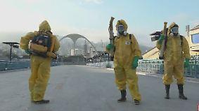 Zika-Virus nicht unter Kontrolle: Gesundheitsexperten fordern Verlegung von Olympia