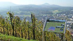 Auf der Schwäbischen Alb gibt es viele schöne Wanderwege - wie hier in Metzingen.