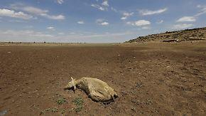 18 Millionen Menschen von Hunger bedroht: Äthiopien leidet unter der größten Dürre seit 30 Jahren