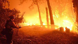 Jahrelange Dürre und hohe Temperaturen: Buschfeuer in Kalifornien breiten sich rasend schnell aus