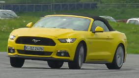 Schwer zu zähmen: Tim Schrick peitscht den neuen Ford Mustang ans Limit