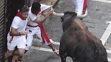 Gefährliche Mutprobe: 7 Läufer wurden durch Hornstöße verletzt.