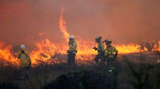 Flammenmeer an Spaniens Mittelmeerküste: Urlauber müssen vor Buschbränden fliehen