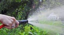 Wer den Garten des Nachbarn wässert, sollte vorher einen Haftungsverzicht von ihm fordern. Denn Hilfsbereite haften für Schäden, die sie auf dem Grundstück verursachen. Foto: Jens Schierenbeck