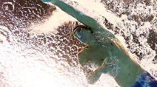 Schwimmspektakel plus Pfeifkonzert: 19. Gold für Phelps krönt Weltrekordflut