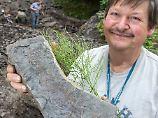 Paläontologe Werneburg, Direktor des Naturhistorischen Museums Schleusingen, präsentiert die Versteinerung.