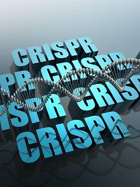 """""""Wir werden in einer Crispr-Welt leben."""""""