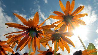 Sonne satt: Der Sommer hat noch ordentlich Puste