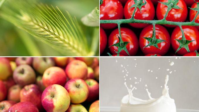 Gluten, Histamin, Fructose, Lactose: Bei Nahrungsmittelunverträglichkeiten ist es nicht ganz leicht, den richtigen Auslöser zu finden.