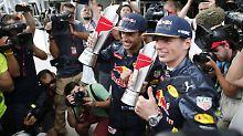 Verstappen rüpelt sich zum Alphatier: Red Bull droht das Mercedes-Problem