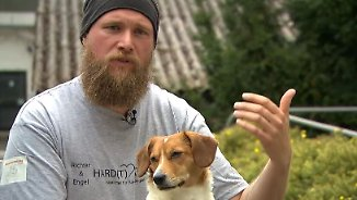 Mit Hund ins Büro: Marc Engelhardt macht Vierbeiner fit für den Arbeitsplatz