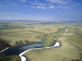 Im Aulavik-Nationalpark hat man garantiert eine weite Sicht.