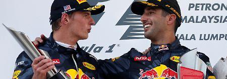 Wer hat bei Red Bull die Hosen an?: Verstappen tönt, Ricciardo liefert