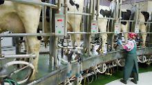 Neues Hilfspaket geplant: Milch wird deutlich teurer