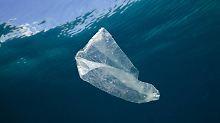 Umweltschutz als Geschäftsmodell: Plastiksammeln im Meer soll Geld einbringen