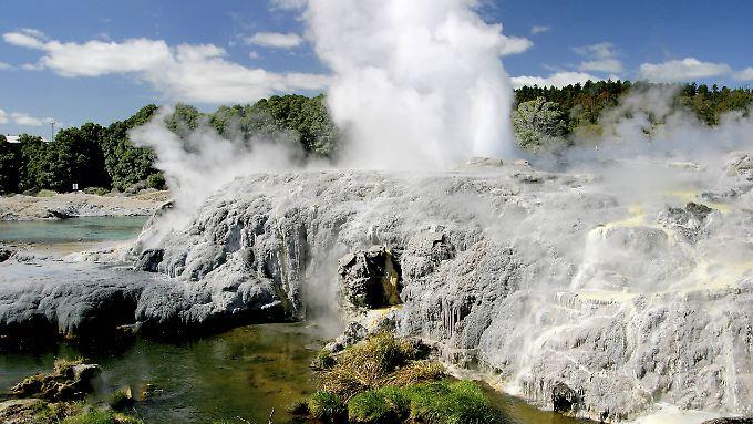 Eine Geysir-Eruption am Lake Rotorua vor einigen Jahren.