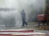 Vogelgrippe bei Wildenten: H5N8 erreicht Frankreich und Rumänien