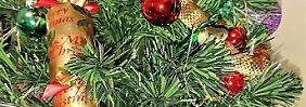 Australierin nimmt's gelassen: Tigerotter versteckt sich in Weihnachtsbaum