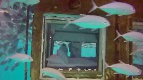 Dem Ozean ganz nah in Tansania: Hotelzimmer im Indischen Ozean ist zu schön zum schlafen