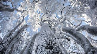 Frostige Zeiten: Deutschland muss sich warm anziehen